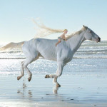 Mimpi Menunggang Kuda Putih