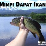 mimpi dapat ikan